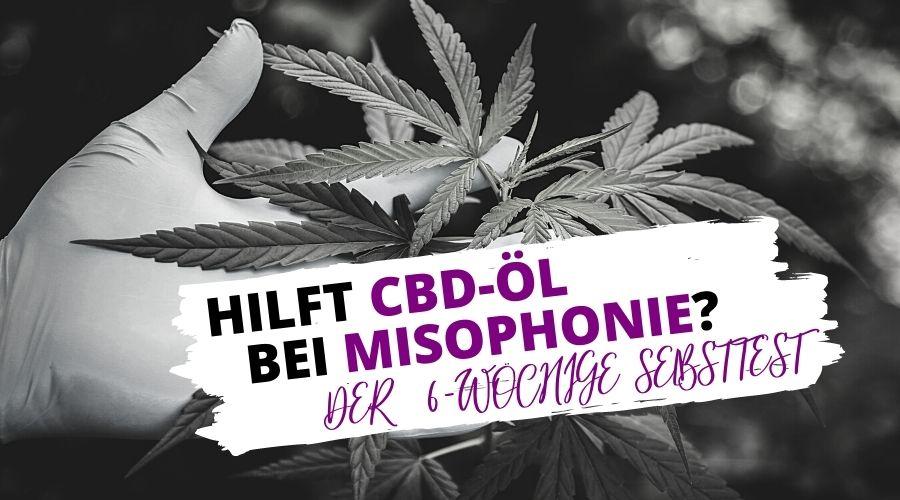 Hilft CBD-Öl bei Misophonie? Das 6-wöchige Selbstexperiment