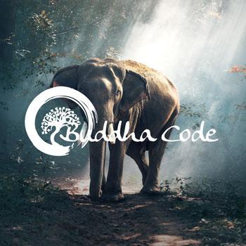 Meditationsmusik von Tim Voigt: Buddha Code Vol. 1